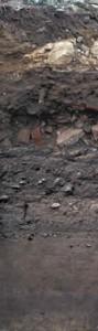 1.5m. Ein Boden in Ulm aus mehren Lagen mit Aufschüttungen, die vom Bodenauftrag für Abstandsgrün in der Gegenwart, über den Schutt des II Weltkriegs, bis zu den Brandschichten der mittelalterlichen Stadtbrände zurückreichen - darunter ist ein natürlicher Auenboden entwickelt. Hier gibt's mehr zu diesem Boden:  weiter. Dieser Boden wird als Pararendzina bezeichnet, 'para' bedeutet im Griechischen 'neben' und Rendzina ist eine eigenständige Bezeichnung für einen sehr steinigen Boden, der weiter unten gezeigt ist.
