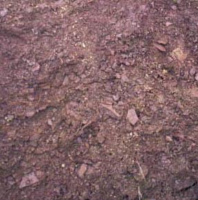 Blick auf Unterboden aus Buntsandstein